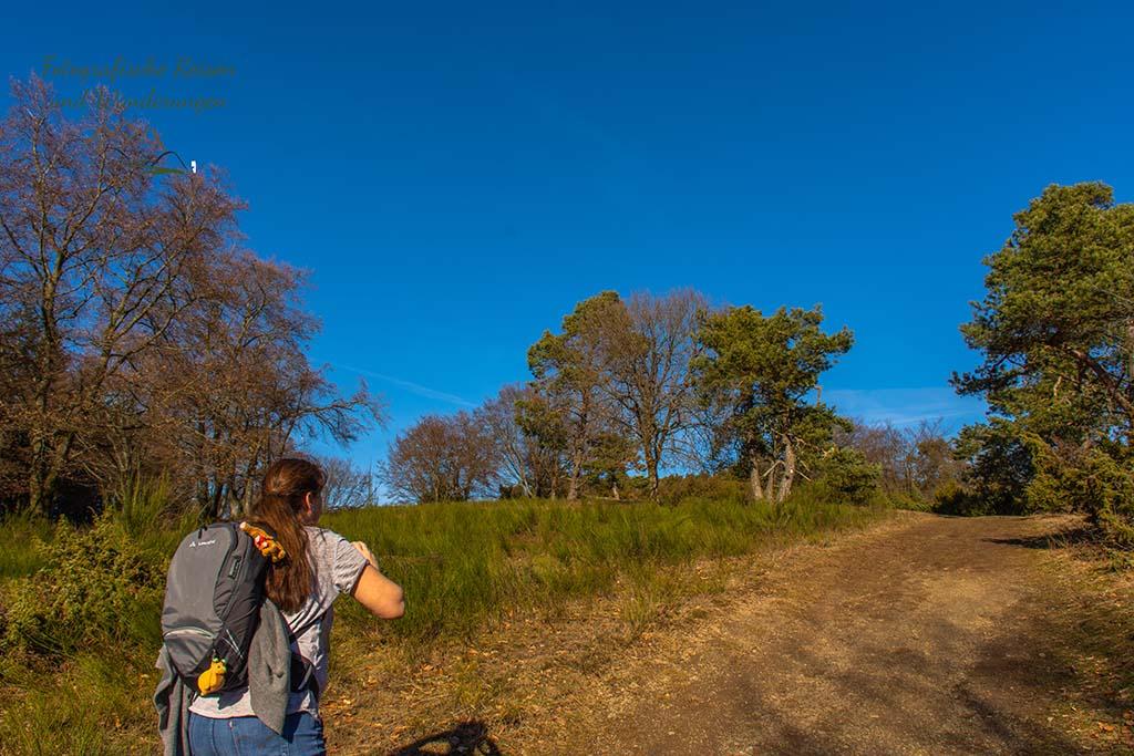 Menke Park - Der Bergheidenweg