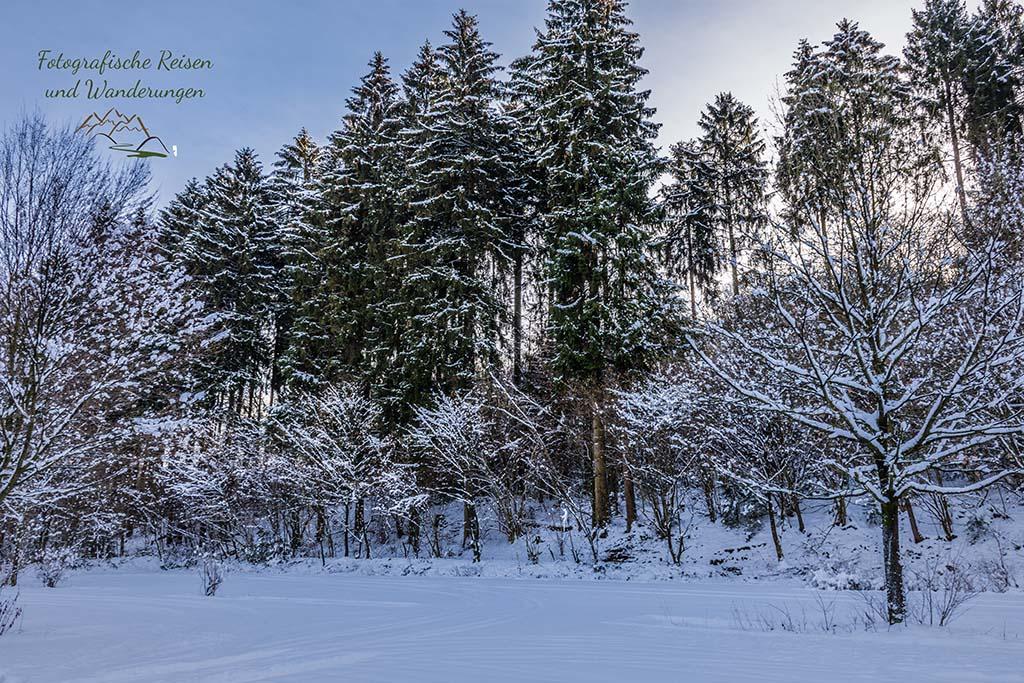 Schneelandschaft - Wandern um das Freilichtmuseum Lindlar