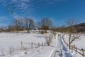 Schnee bedeckter Weg im Freilichtmuseum Lindlar