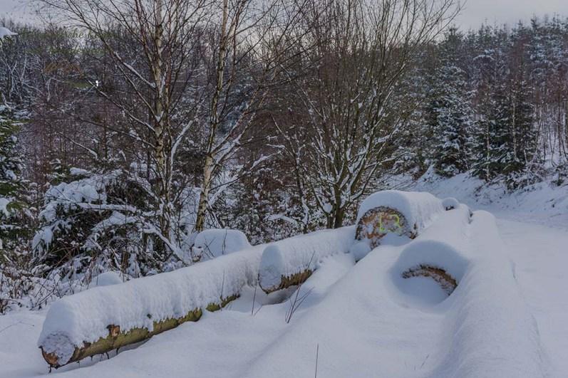 Ein Holzstapel mit Schneehäubchen