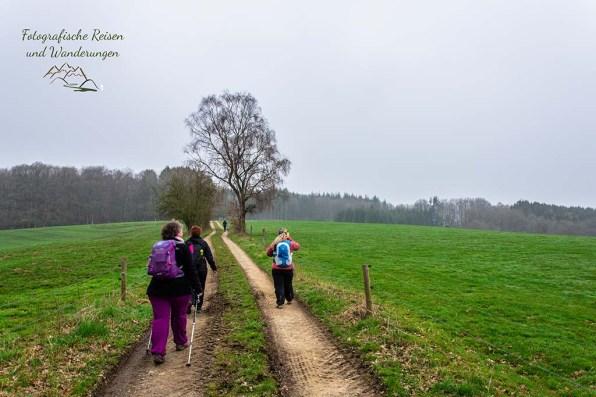 Bergischer Panoramasteig _ Benroth nach Holsteinsmühle (50)