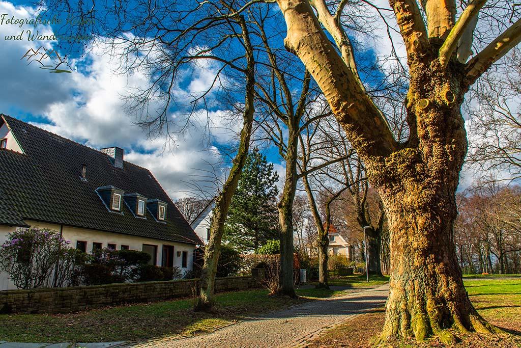 Der schönste Ort in Bochum - Beinahe am Start