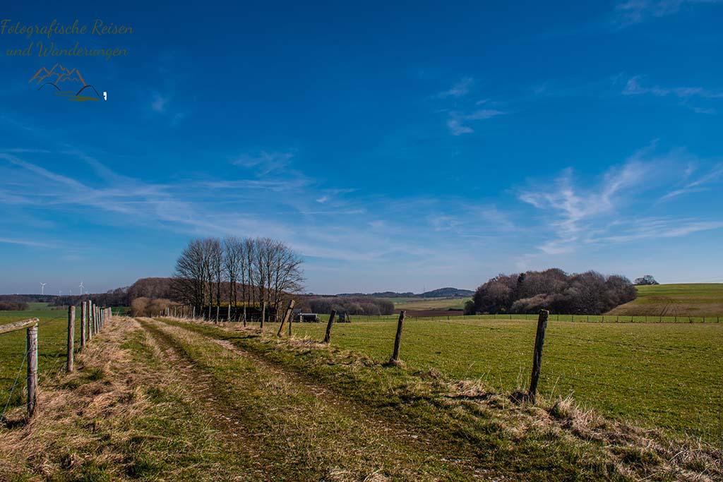 Wiesenweg an Feldern vorbei - Eifelschleife Fuchshöhle