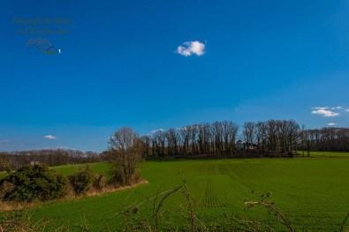 Grüne Landschaft auf dem Bergbauwanderweg im Muttental