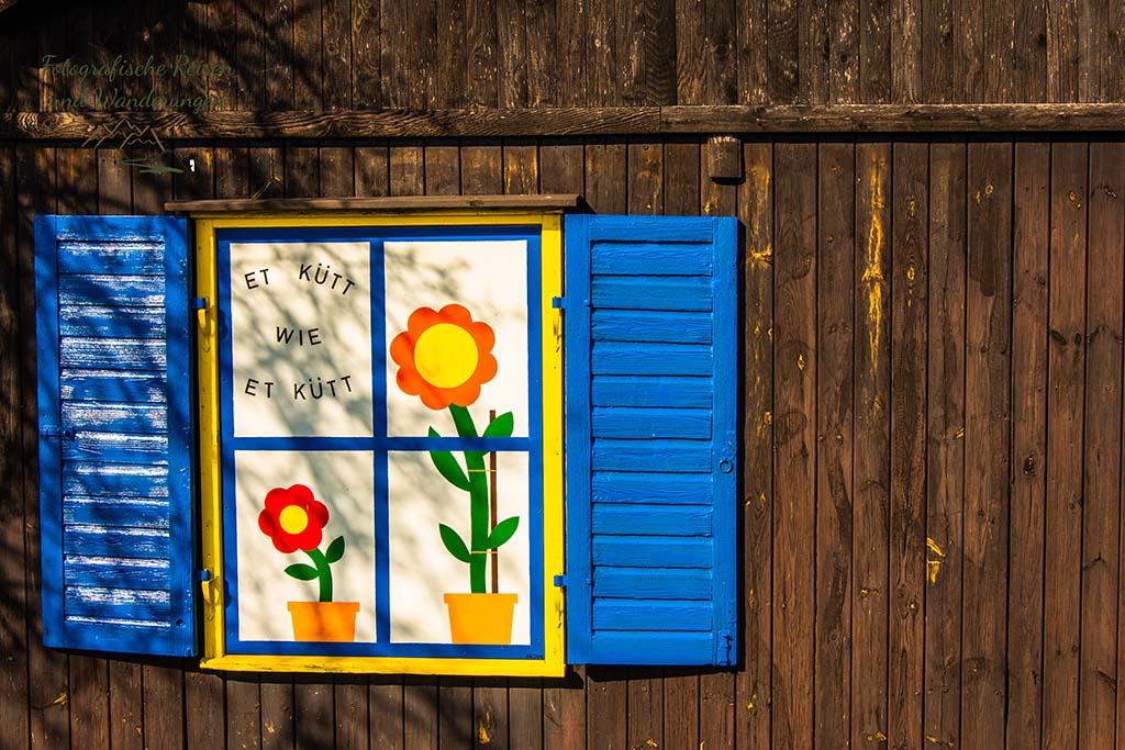 Ein Fenster mit Sonnenblumen und einem Spruch