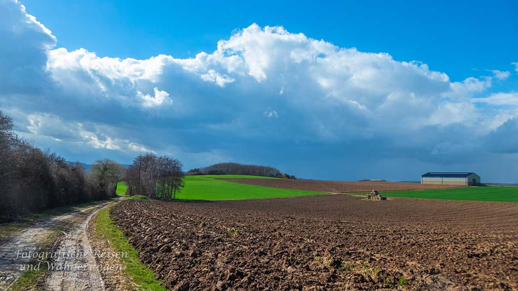 Feldwege - Auf dem Rückweg zur Hardtburg