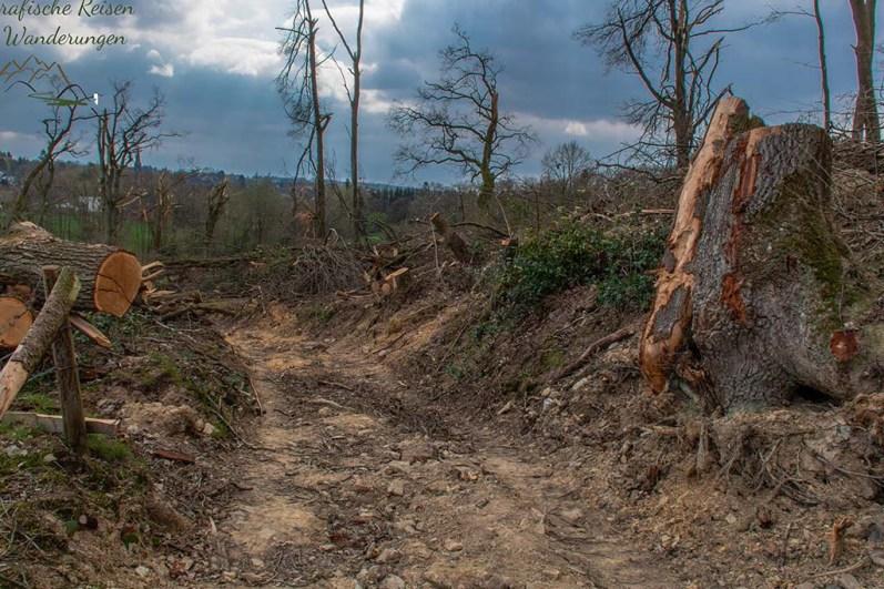 Roetgen der Ort in dem der Tornado fegte