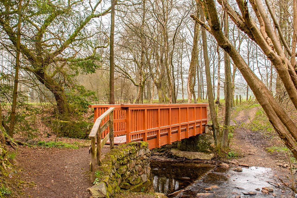 Brücke über den Weserbach - Eifelsteig Etappe 2