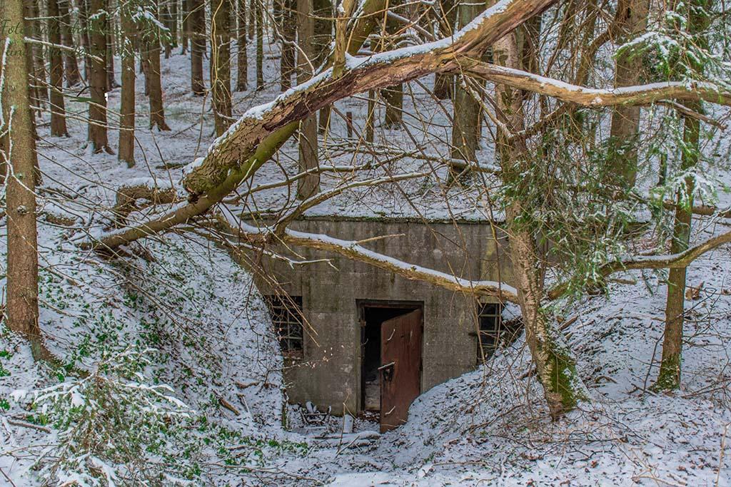 Ein steinernes Gebäude im Wald mit rostiger, offen stehender Tür