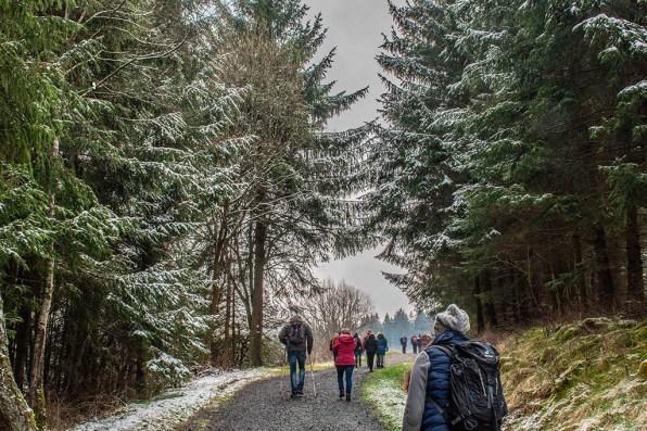 Wandergruppen auf dem Weg zu den wilden NArzissen