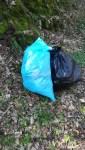 Müllsäcke im Wald