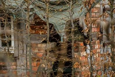 Kuechenschellen in der Zuelpicher Boerde (151)
