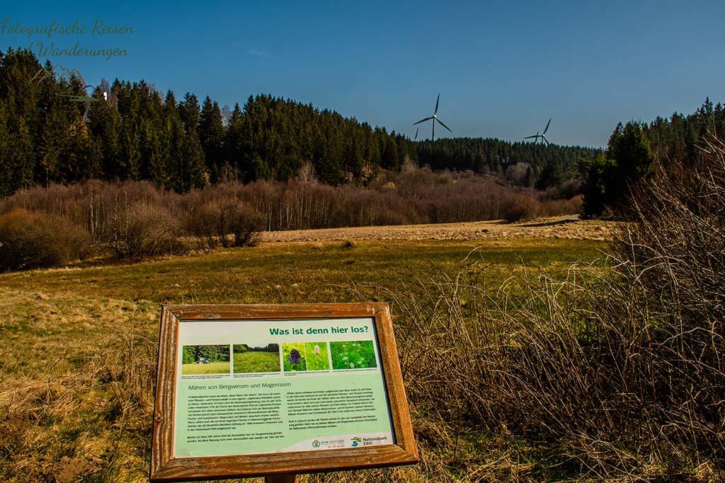Informationen über Flora und Fauna