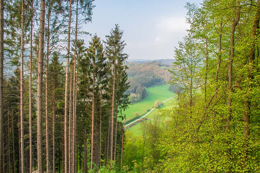 Eifelsteig zwischen Monschau und Einruhr