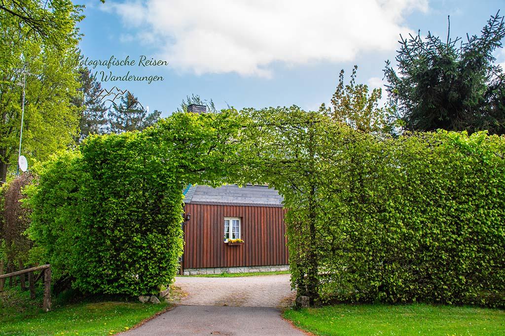 Buchenhecke zum Schutz der Häuser - Eifelsteig zwischen Monschau und Einruhr