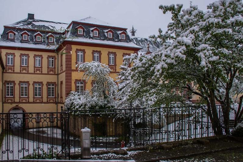 Kloster Steinfeld Außenansicht- Winter im Mai