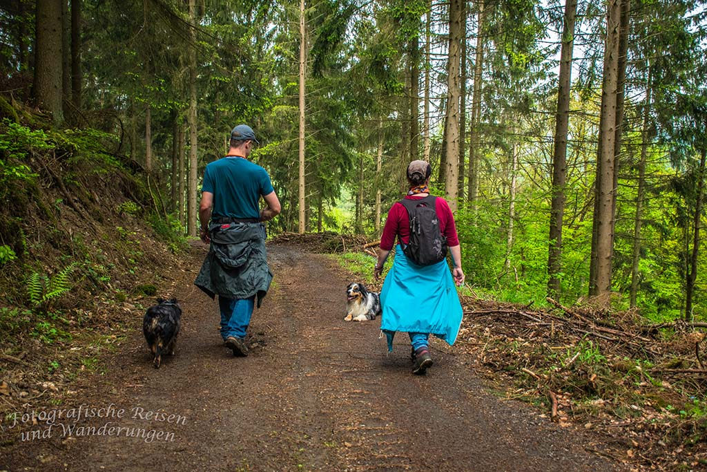 Spaziergänger auf Waldweg