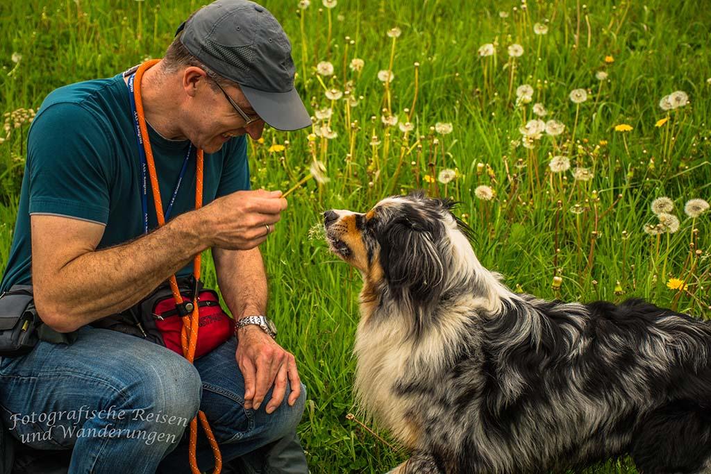 Hund, Herrchen und die Pusteblume