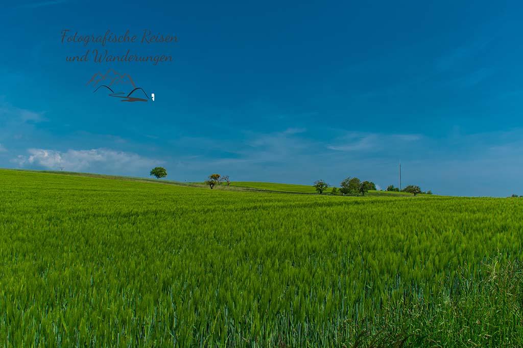 An Feldern entlang - Traumpfädchen Löfer Rabenlaypfad