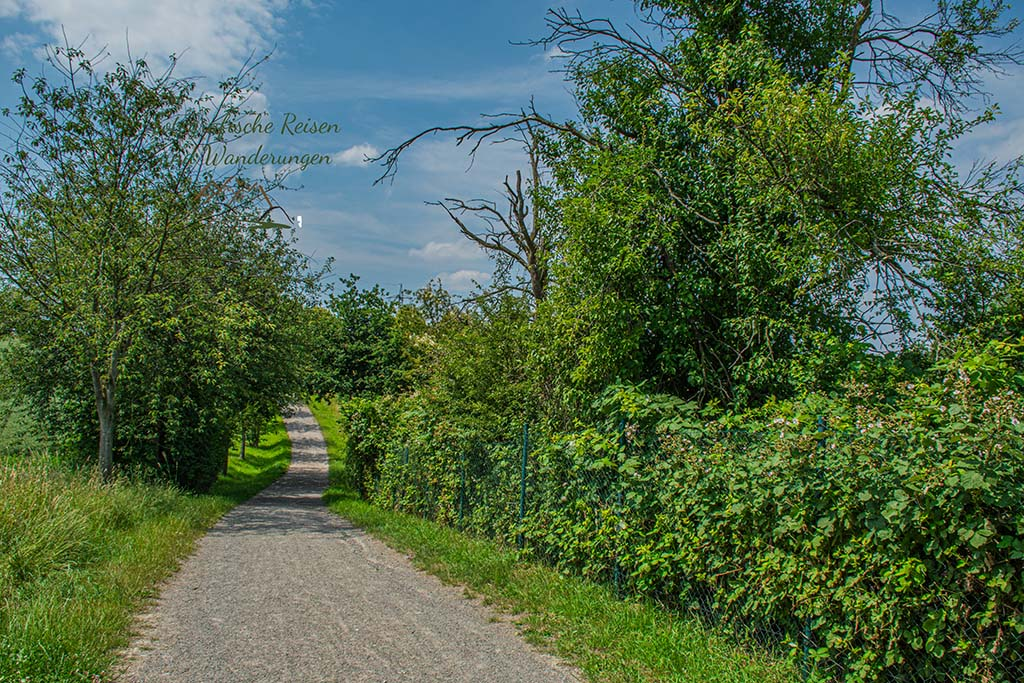 Streuobstwiesen im Landschaftspark Mechtenberg - Grüne Oasen im Ruhrgebiet