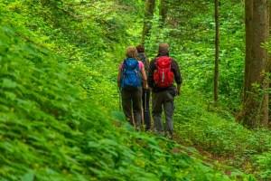 Eine Gruppe Wandererinnen