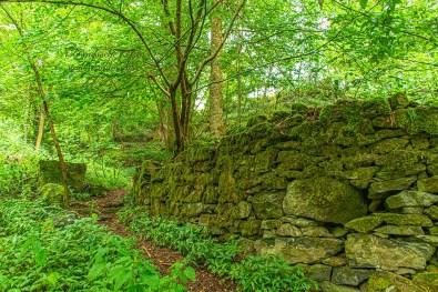 Eine alte Mauer