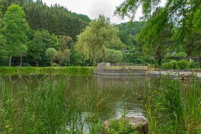 Teich im Kurpark Daun