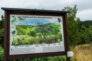 Zuweg - Eifelsteig zwischen Manderscheid und Himmerod