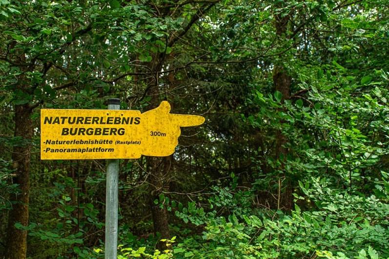 Weg zum Burgberg