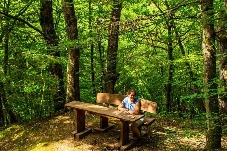 Rastplatz im Wald - Die Küppeltour im Lahntal