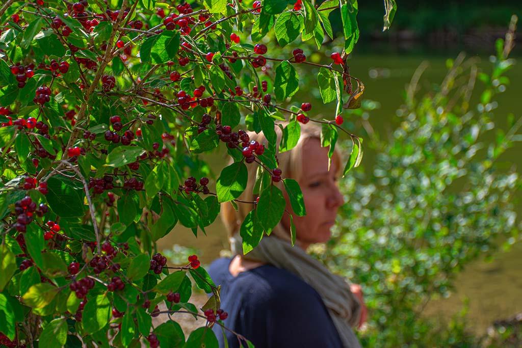 Katja hinterm Busch