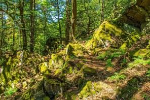 Wandern im Siegerland - Wittgenstein