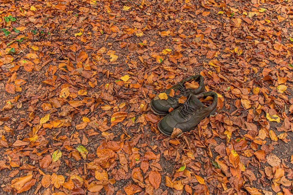 Panoramaweg Perl - Ein paar Schuhe auf einem Wanderweg