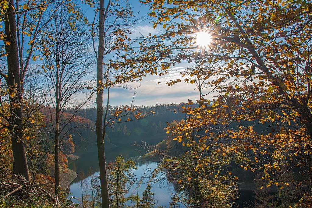 Herbstwanderung an der Wahnbachtalsperre