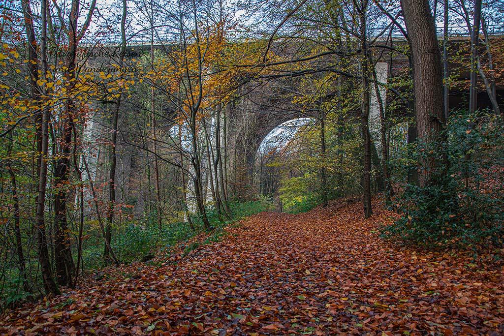 Bergische Mühlen und ein Rittersitz - Gut Landscheid Runde