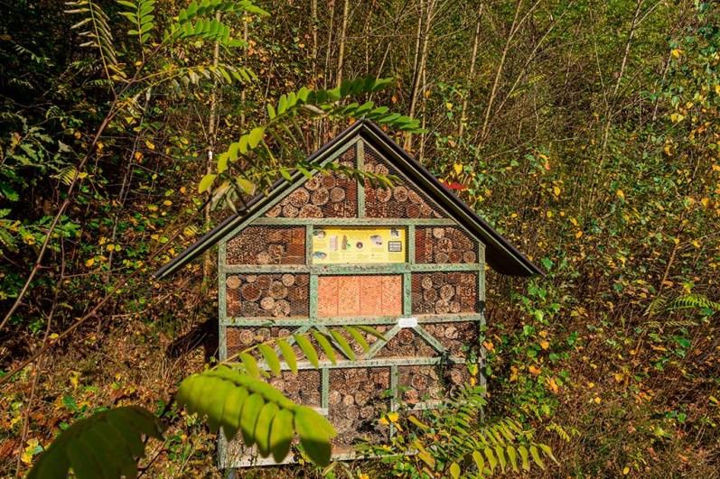 Großes Insektenhotel im Froschparadies Litermont