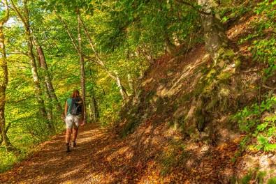 Die Sonne und der Herbst - Ulmener Maar
