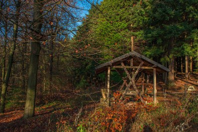 Arboretum Burgholz (64)