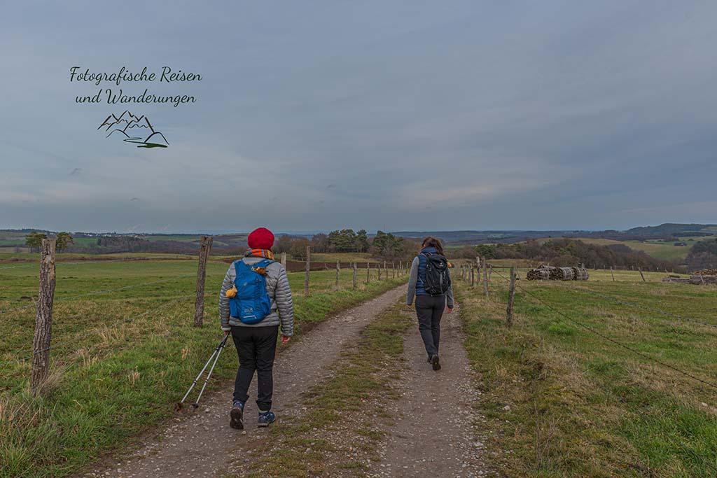Wanderschnecken in der Eifel unterwegs