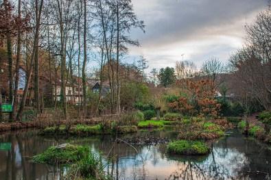 Teichlandschaft in Sinneswald