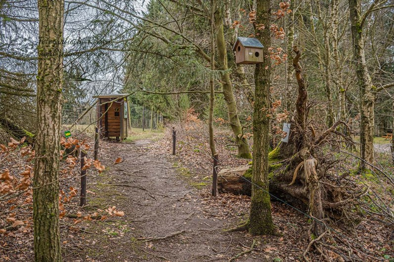 Greifvogelstation und Wildfreigehege Hellentahl