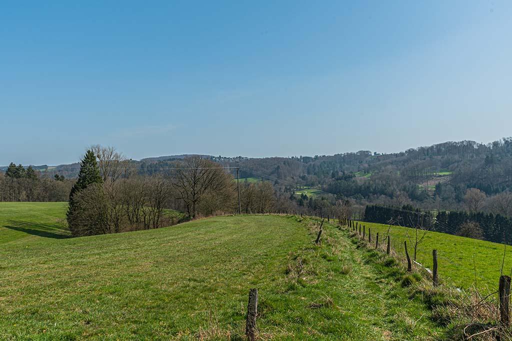 Weiche Wiesenwege hinter Engeldorf