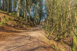 Alte Wege bei Offermannsheide
