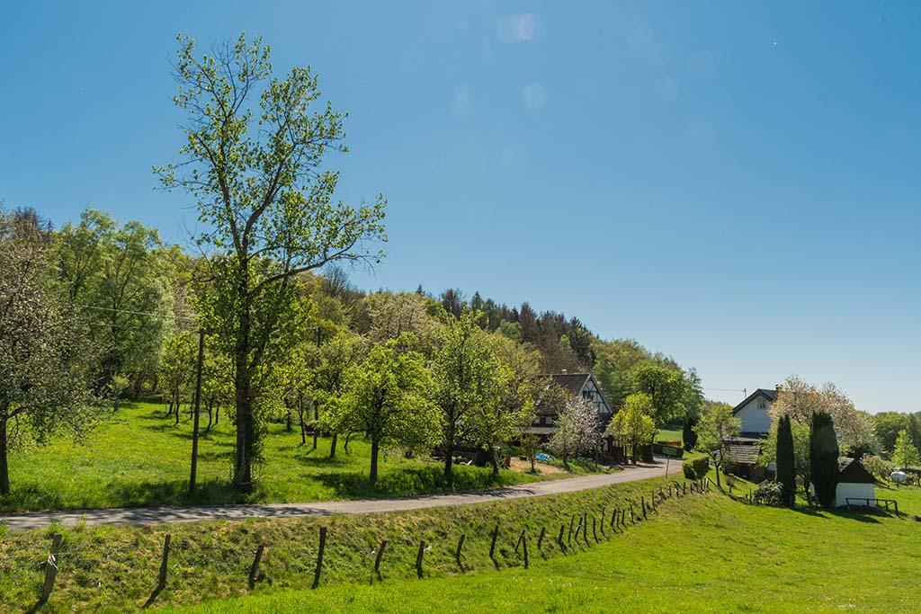 Einsame Wege in Marienberghausen