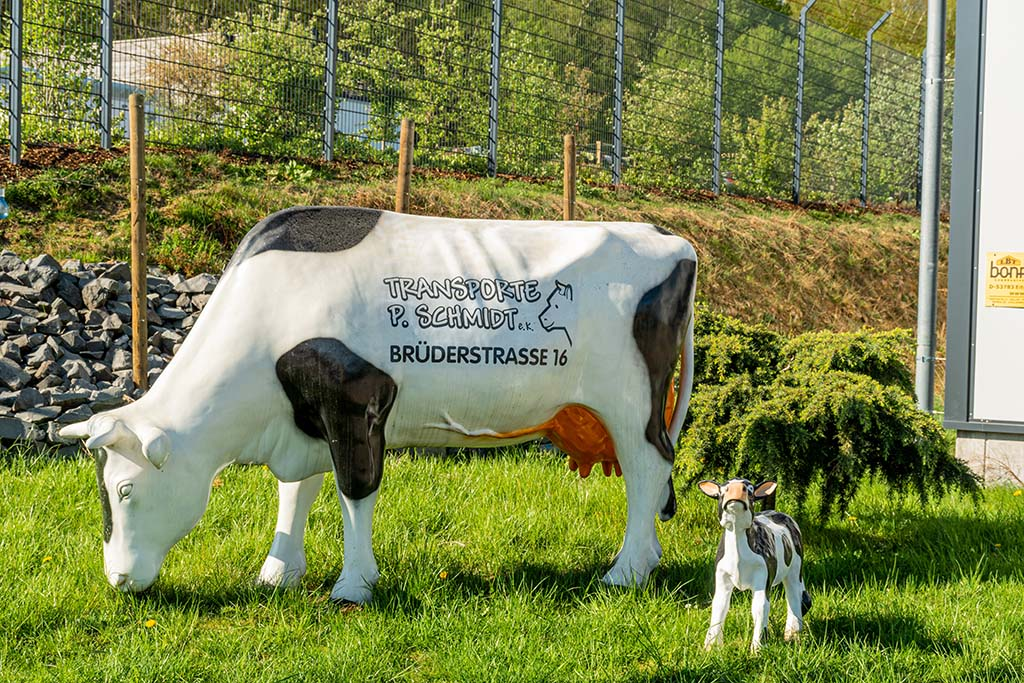 Plastikkuh - Einsame Wanderung bei Marienberghausen