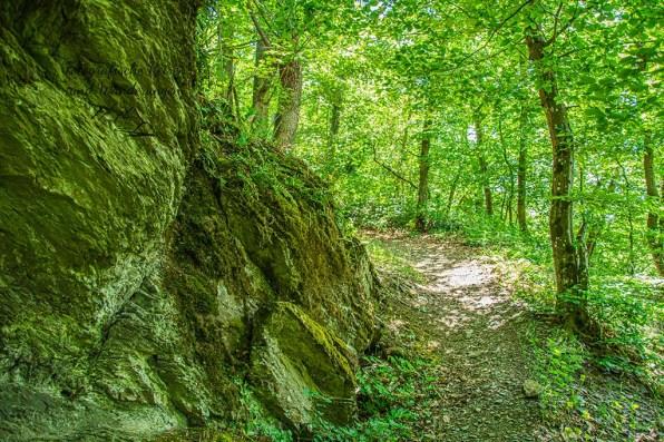 Weg hinauf zur Burg Schöneck