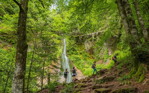 Genießerpfad Sankenbachsteig -Sankenbach Wasserfall