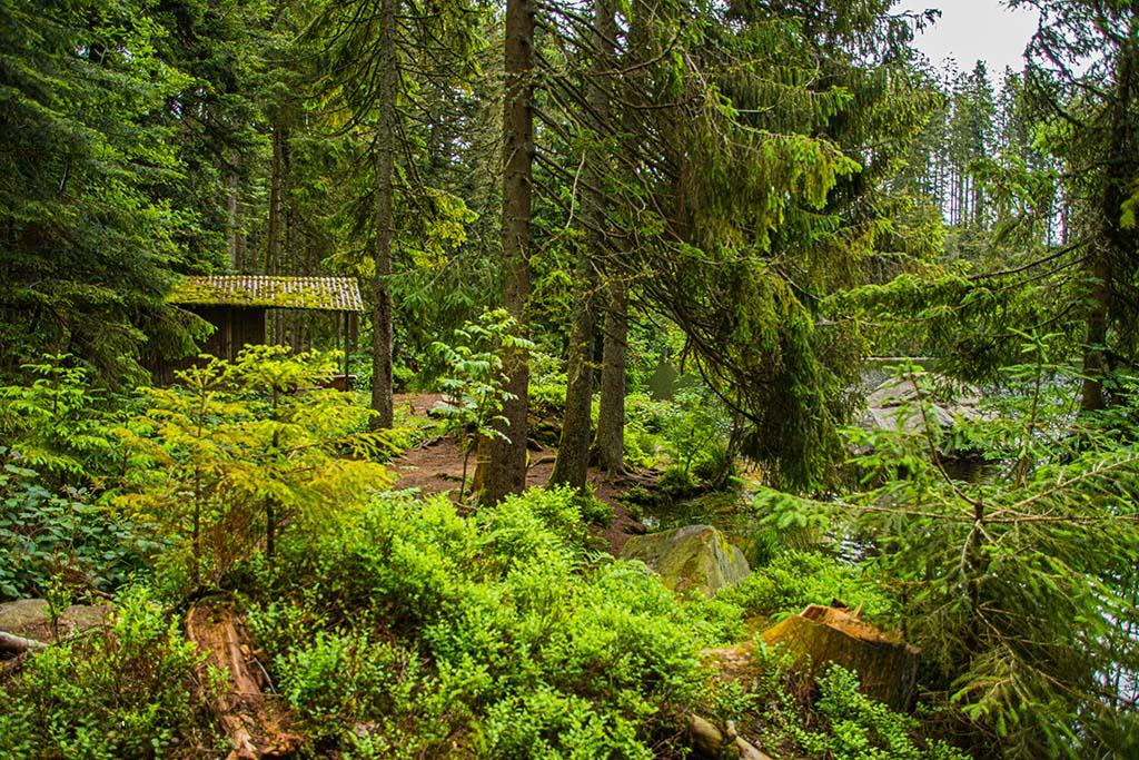 Schutzhütte am Glaswaldsee