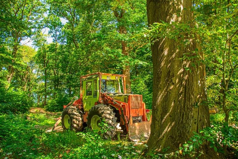 Traktor im Wald bei Reidenbruch