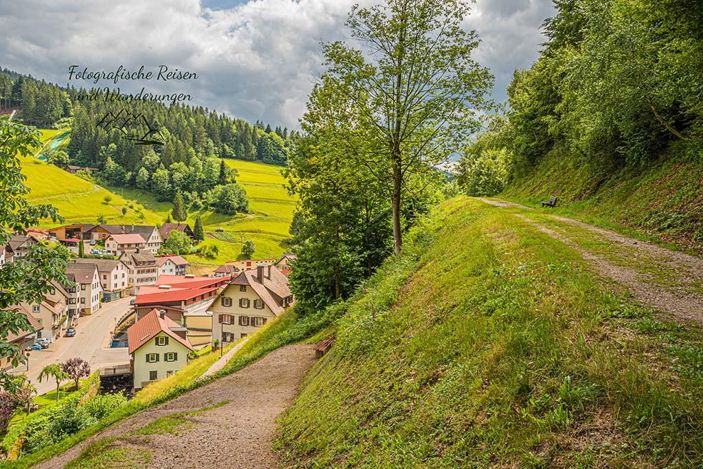 Blick auf die Kirche in Griesbach